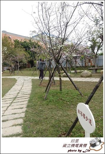 3月葳立機電賞櫻 (109)