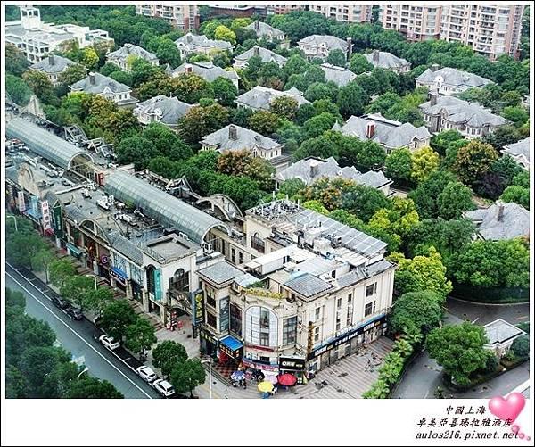 2016上海 (86)