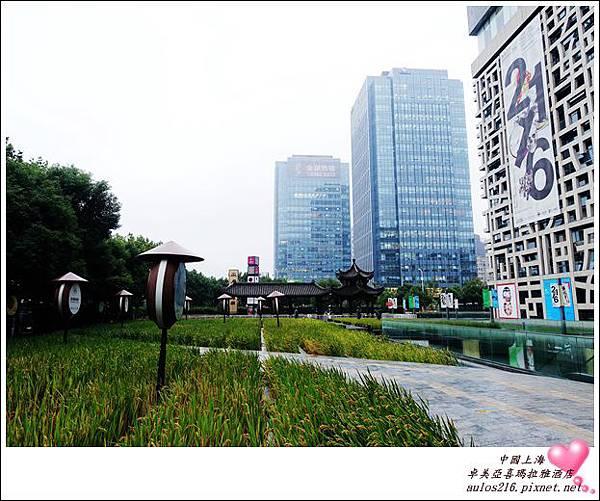 2016上海 (163)