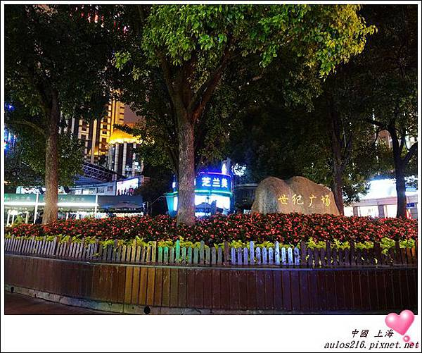 2016上海 (218)