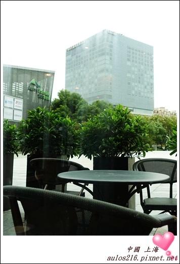2016上海 (281)