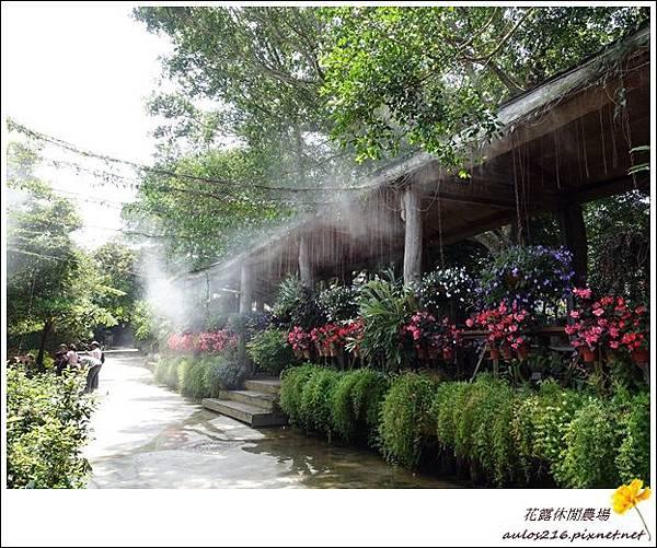 花露農場 (9)