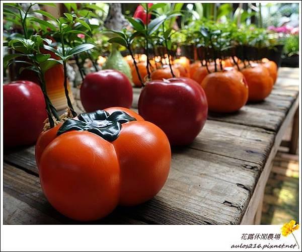 花露農場 (60)