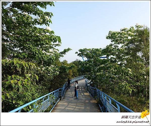 銅鑼天空步道 (33)