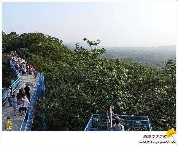 銅鑼天空步道 (10)