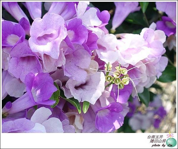台南玉井隱田 (128)