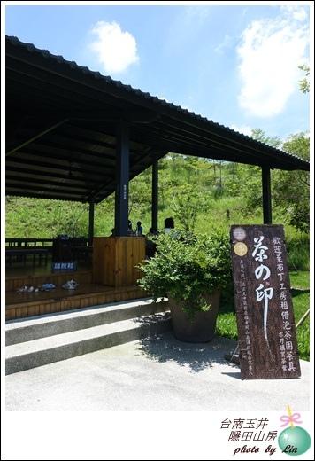 台南玉井隱田 (118)