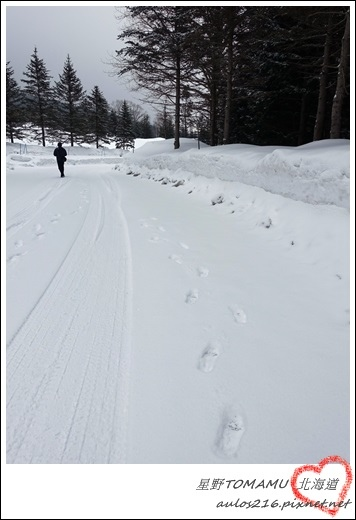 2017北海道 (182)