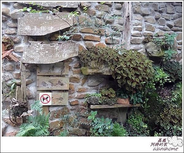阿將的家(25露) (117)