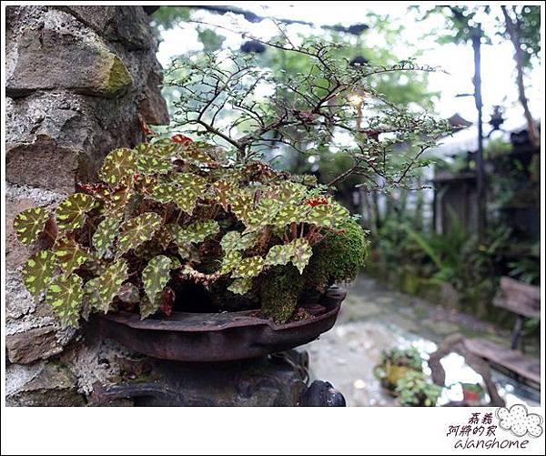 阿將的家(25露) (129)