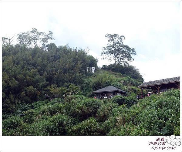 阿將的家(25露) (305)
