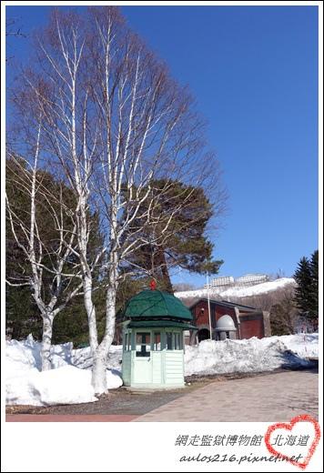 2017北海道 (963)