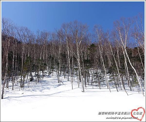 2017北海道 (1104)