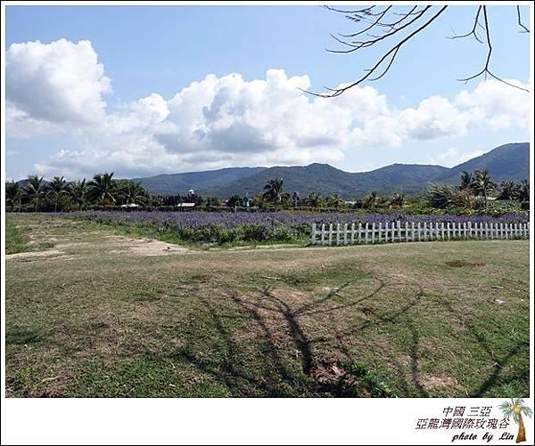 海南島 570