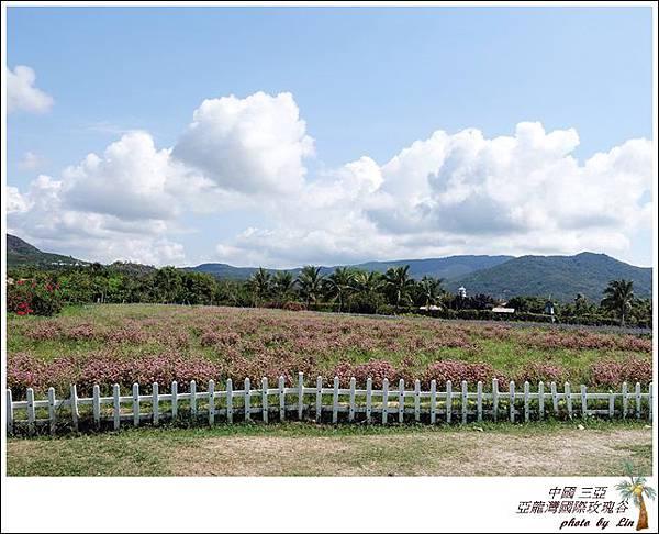 海南島 569