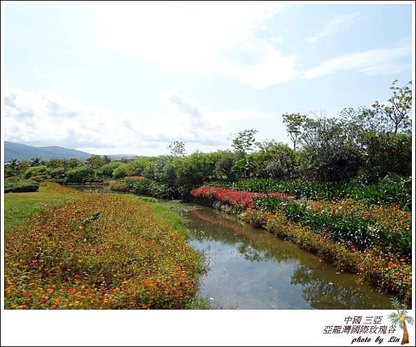 海南島 536