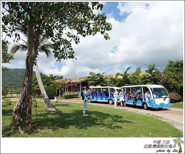 海南島 528