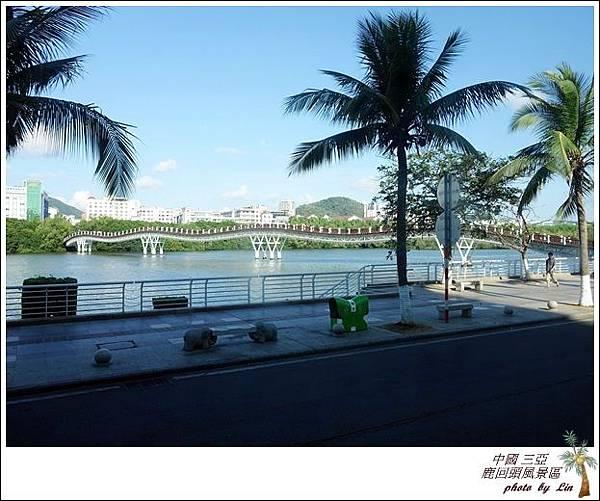 海南島 620