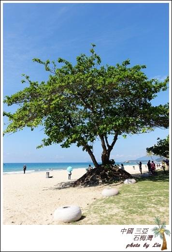 海南島 670