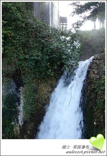 D2萊茵河瀑布 (12)