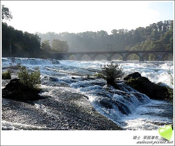 D2萊茵河瀑布 (54)