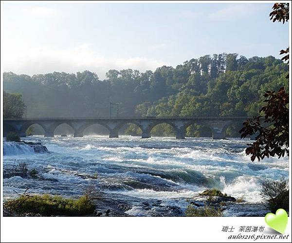 D2萊茵河瀑布 (23)