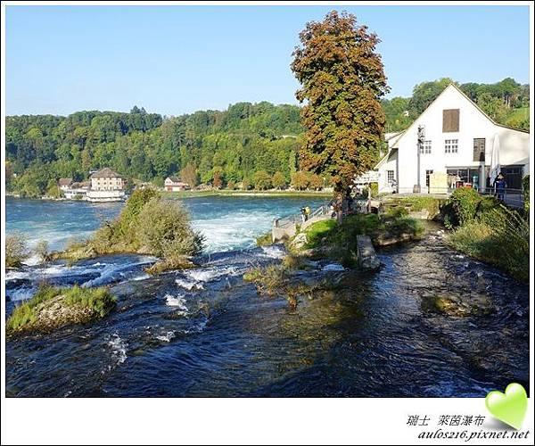 D2萊茵河瀑布 (30)