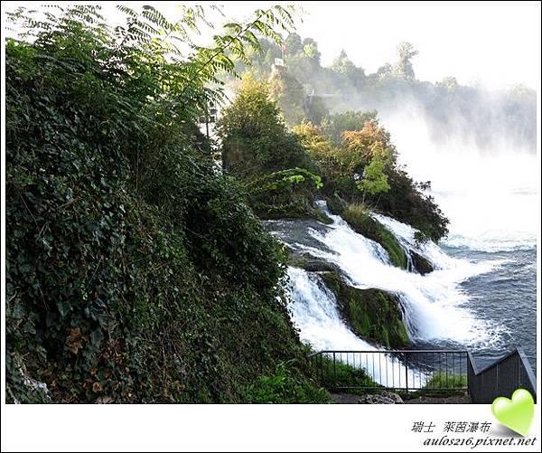 D2萊茵河瀑布 (52)