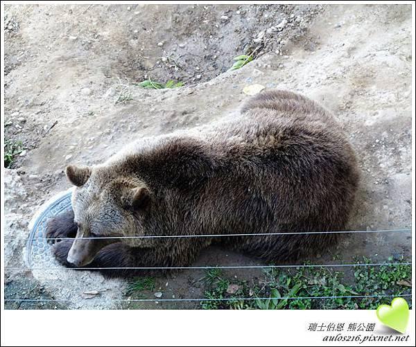 D3熊公園 (8)