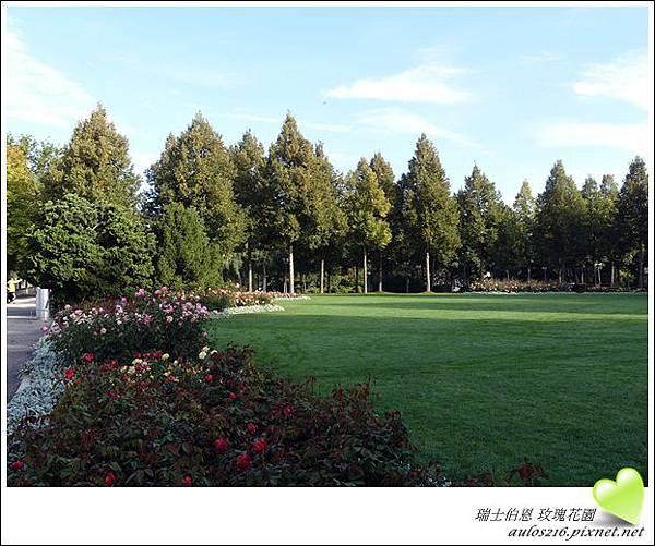 D3熊公園 (28)