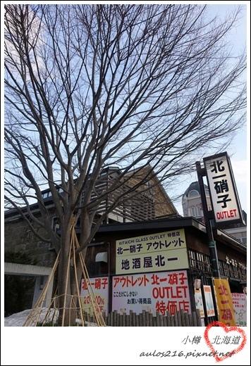 2017北海道 (1337)