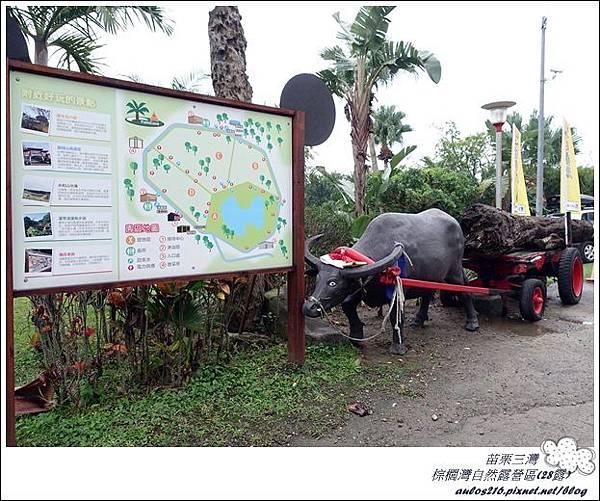 棕櫚灣自然露營區 28露 (101)
