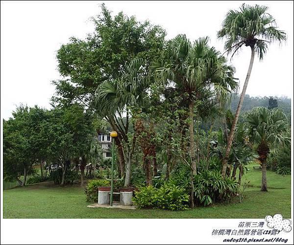 棕櫚灣自然露營區 28露 (31)