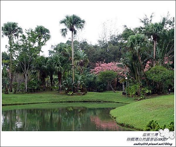棕櫚灣自然露營區 28露 (109)