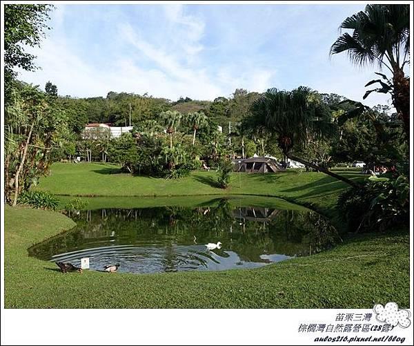 棕櫚灣自然露營區 28露 (223)