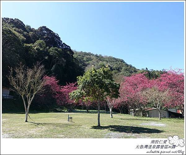 2018太魯灣30露 (4)