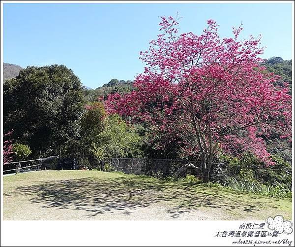 2018太魯灣30露 (13)