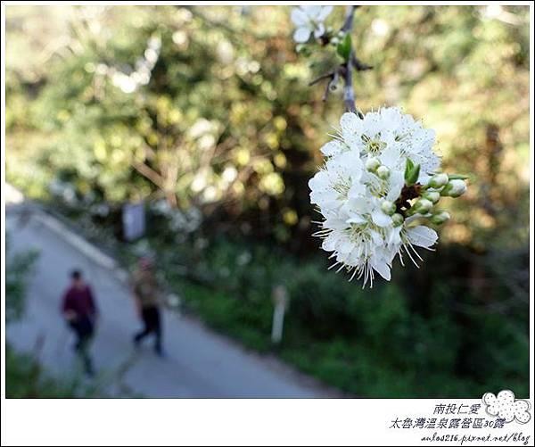 2018太魯灣30露 (51)
