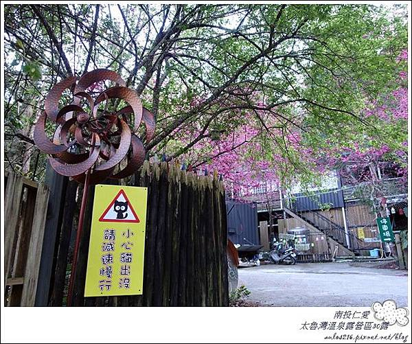 2018太魯灣30露 (56)