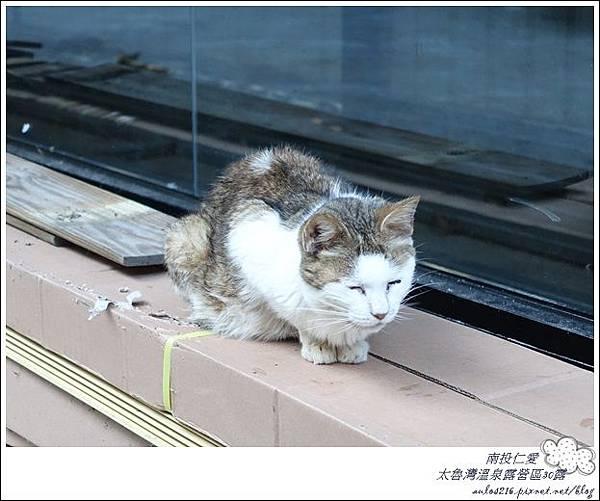 2018太魯灣30露 (57)