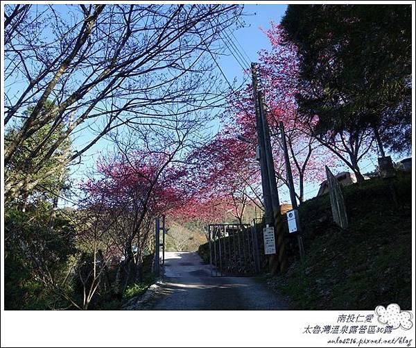 2018太魯灣30露 (47)