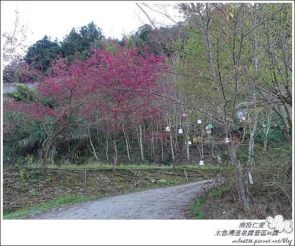 2018太魯灣30露 (109)
