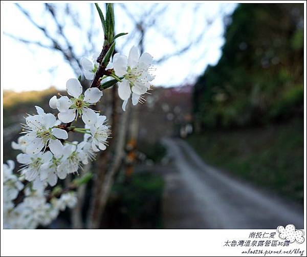 2018太魯灣30露 (148)