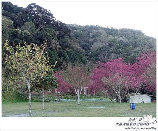 2018太魯灣30露 (154)
