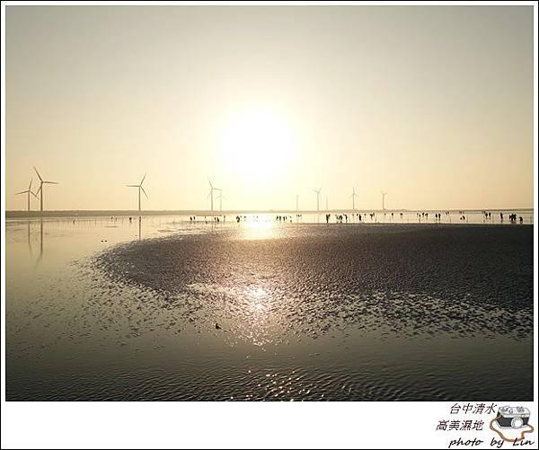 高美濕地 (71)