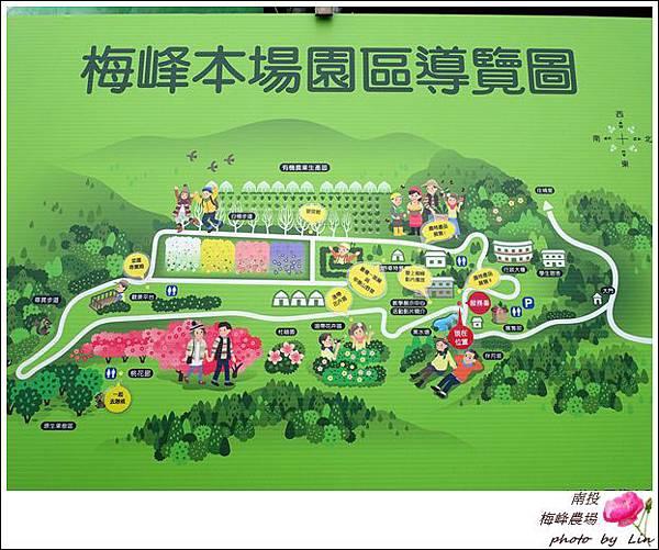 2018梅峰農場 (12)