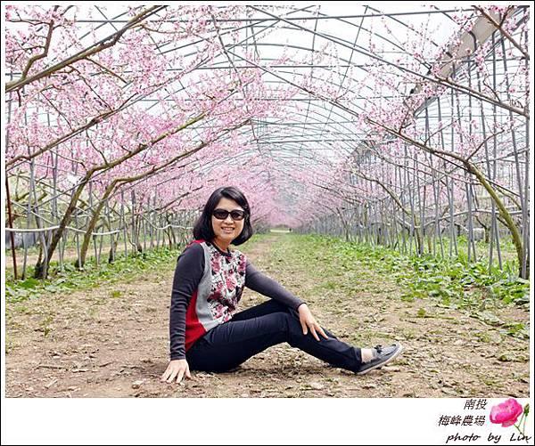 2018梅峰農場 (222)