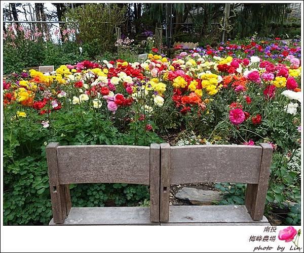 2018梅峰農場 (137)