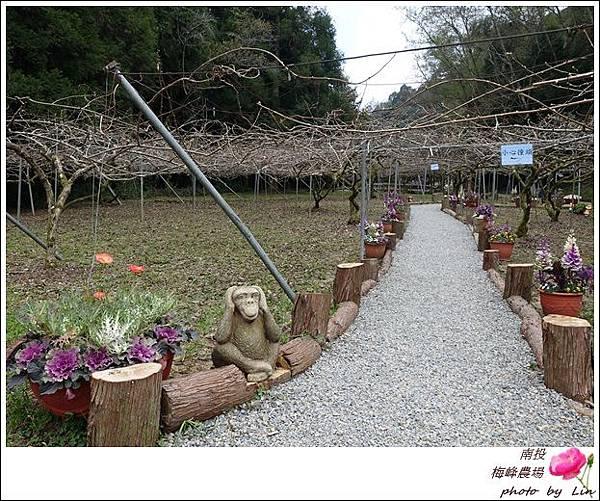 2018梅峰農場 (320)