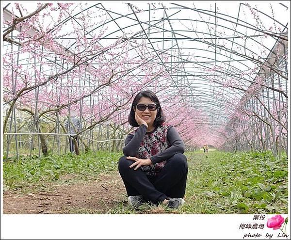 2018梅峰農場 (285)